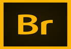 Adobe Bridge 2020 v10.0.3.138.00 特别版